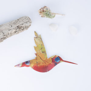 colibri-4
