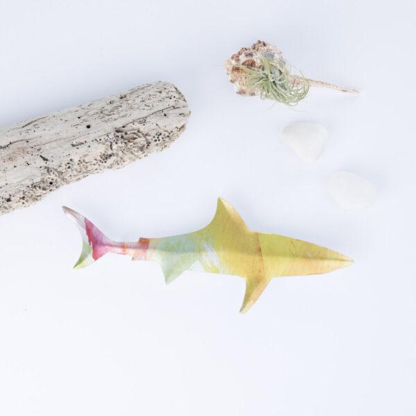 little-shark-1