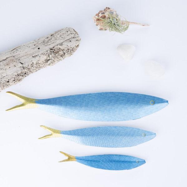 sardines-6