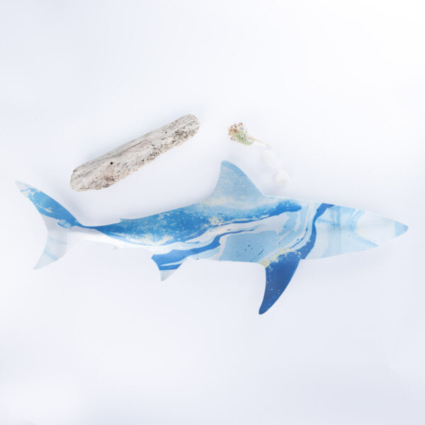 shark-b-1