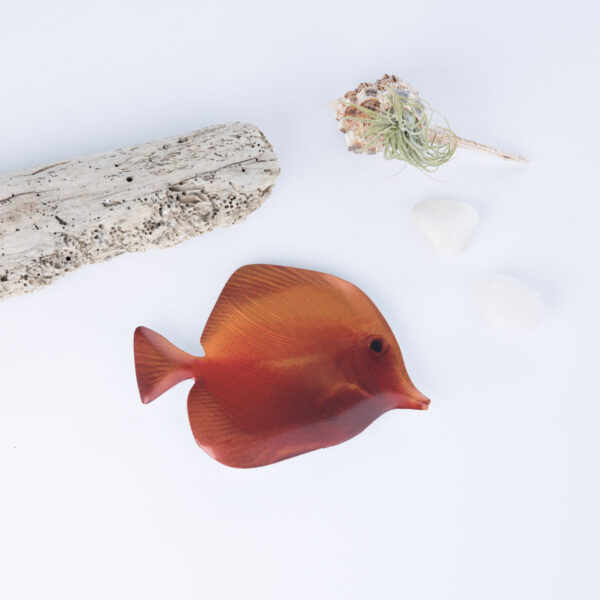 tropical-fish-small-1